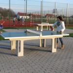 tenis stolowy